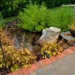 OBrien Rain Garden