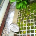 The water lands on river rock, making a soothing water sound in the garden during rain events.
