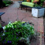 The lower brick patio and a lovely container by the homeowner.