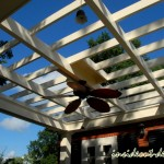 Pergola from below with fan and lighting chosen by owner