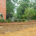 The Mesa Wall was added to help soften the grade on the left side of the house.